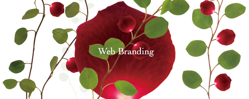 Branding High quality Web solution